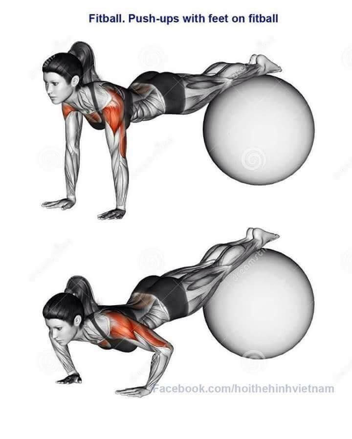 Fitball- Pushup with feet on fit ball