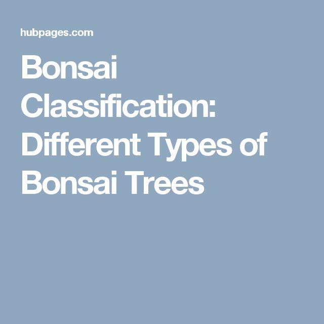 Bonsai Classification: Different Types of Bonsai Trees