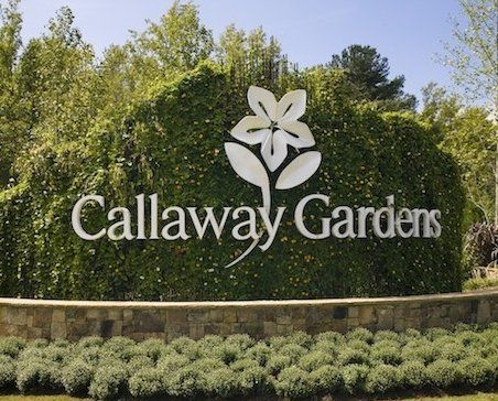 Best 25 callaway gardens ideas on pinterest pine - Callaway gardens festival of lights ...