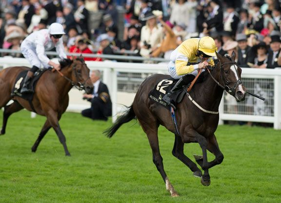 A STAR ASCENDANT  Rapidly rising star of the sprinting ranks Quiet Reflection (GB) (Showcasing {GB}) registered a career high in Haydock's G2 Sandy Lane S. last month and, having scooted to an impressive success there, …