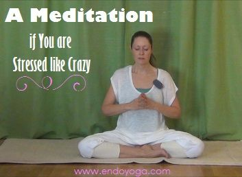 A Meditation that is great to do if you are very stressed or anxious!  http://www.endoyoga.com/blog/a-meditation-if-you-are-stressed-like-crazy  Yoga for Endometriosis & Pelvic Pain