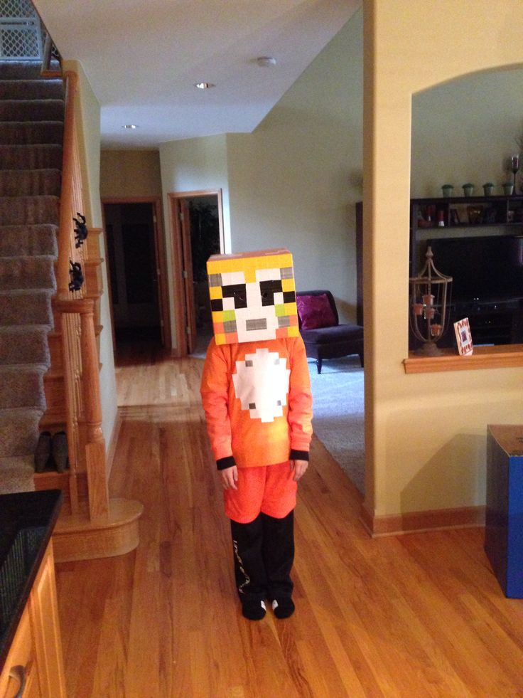 And stampy cat costume