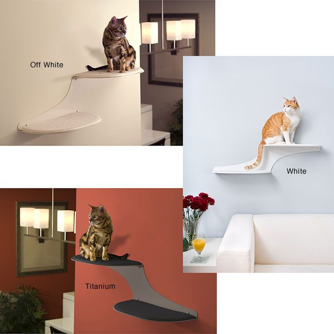 Let Your Cat Relax On This Unique Cat Wall Shelf From The