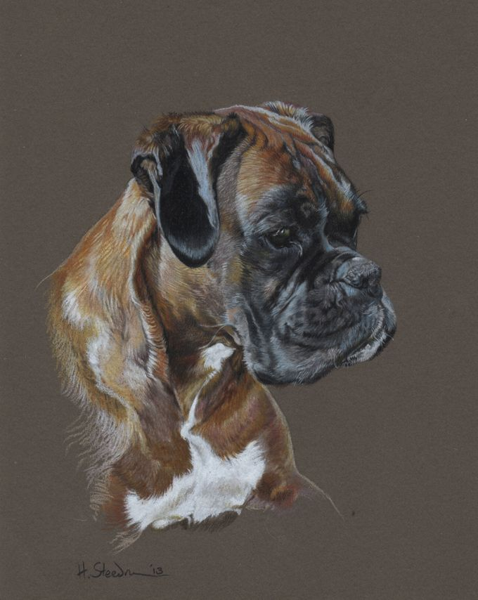 Betty by ~Utlah on deviantART ~ Boxer dog Training (click here) http://dunway.us/kindle/html/boxer.html
