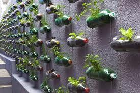 reciclar botellas de plastico