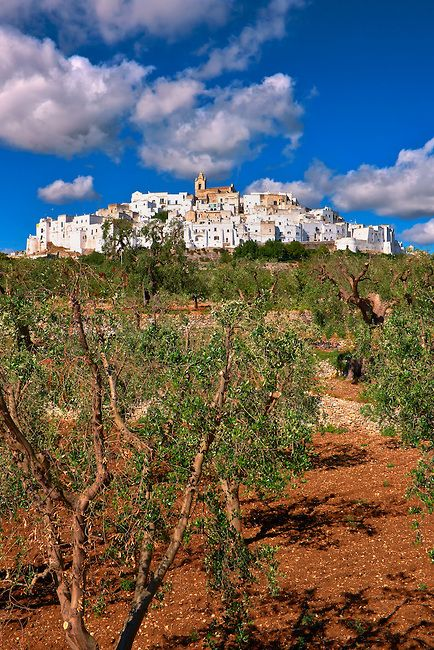 Ostuni, The White Town, Puglia, Italy. Rising high above the vast olive-carpeted plateau of the lower Murgia, Ostuni has long been an awe-inspiring sight.