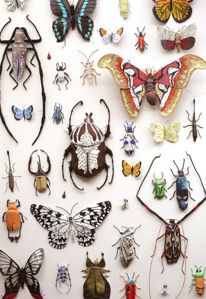 I am an artist in the UK and a little bit obsessed with insects! So a few years ago I tried to recreate my favourite specimens using recycled paper, wire and thread. I now have a collection of around 100 different species and am still adding to it!  The insects are all hand cut using a scalpel and some of them are embroidered by hand to create their patterns and textures.