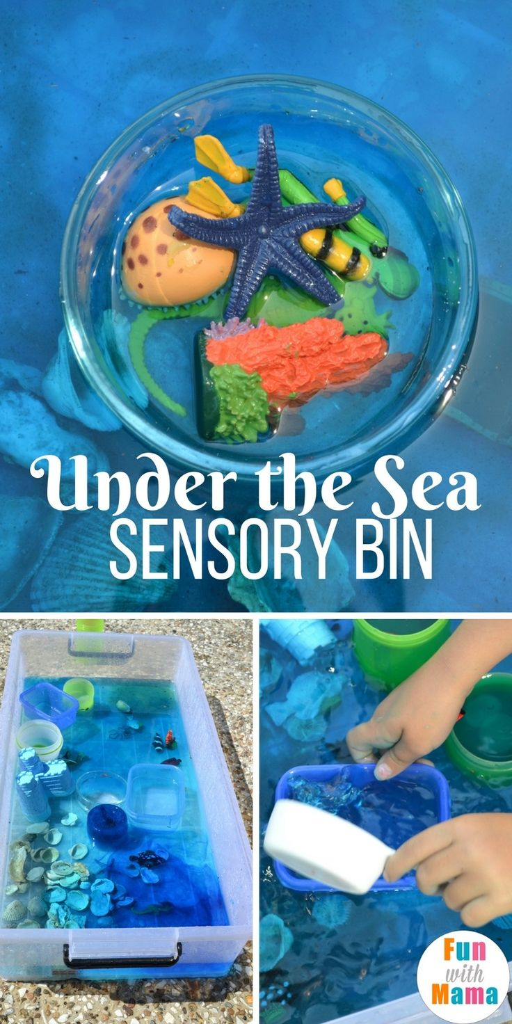 Under the Sea Sensory Bin