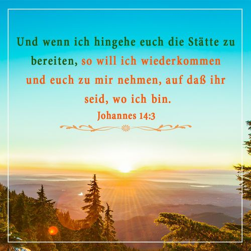 Johannes 3 14