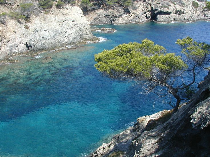 Porquerolles - South of France
