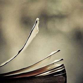 Pour que les histoires passées s'envolent, pose le livre de ton coeur dans le vent et laisse faire le temps...