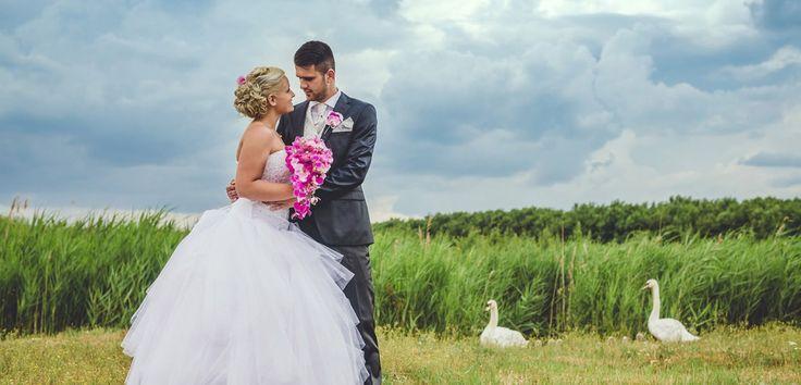 Esküvő fotózás - Blanka az esküvő napján hatalmas öleléssel és kedvességgel várt minket. Az egész napjuk olyan, volt mint ő maga. Tökéletes és bájos...