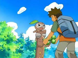 Anime - Pocket Monsters Diamond & Pearl - episode 014 - Filb.de