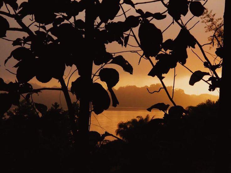Good morning Mekong River.