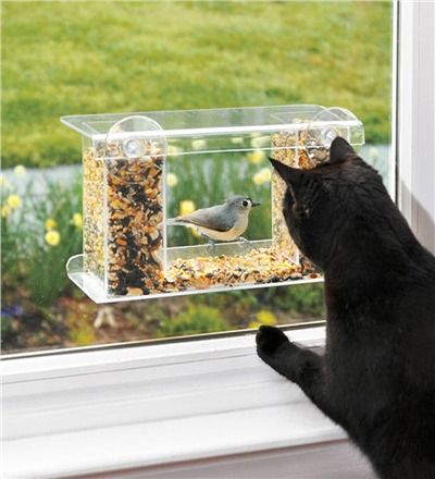 One way mirror bird feeder..so your indoor cat can watch the birds without disturbing them! I need to buy one of these.