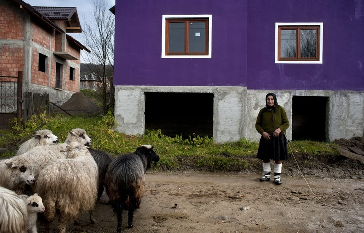 Woman with sheep, Stramtura, Maramures, Romania. Stramtura is one of the few villages from where people have chosen not to go abroad. The few ones who did leave are slowly starting to build new and modern houses.