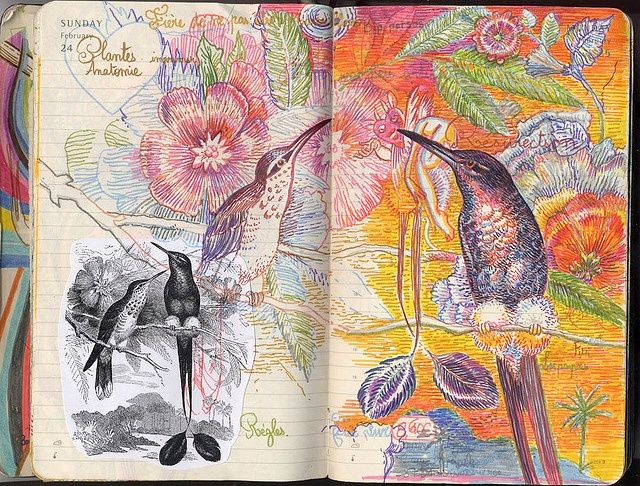 love the idea of working off of an illustration from an old book, collaged in