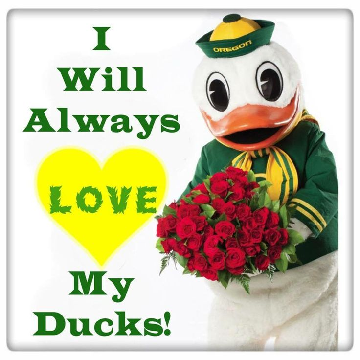 Probably the worst bowl game loss ever, but if you're a true Duck fan, you ALWAYS support your team!