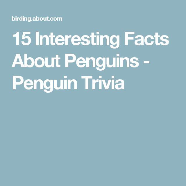 15 Interesting Facts About Penguins - Penguin Trivia