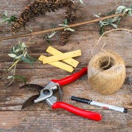 Benodigdheden voor stekken: snoeischaar, touw, plantenlabels en schrijfgerei.