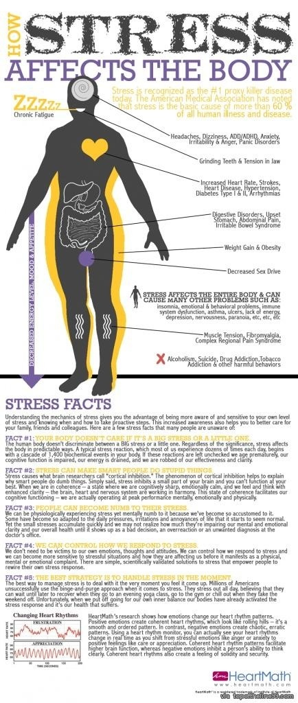 How stress affects the body infographic... via topoftheline99.com...