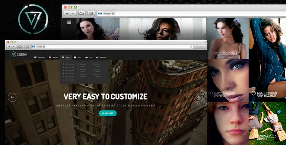 Cobra | Portfolio & Photography WordPess Theme - Portfolio Creative