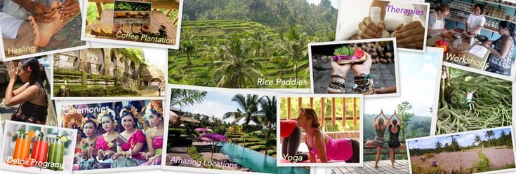 """Ubud Bali: Spiritual Vibe in the Cultural Hub  It is the island's major art and culture center. Ubud has a long history in alternative therapies and holistic wellness, as the very name comes from the word """"ubad"""", which means medicine in ancient Balinese.  rice field yoga retreat meditation workshop coffee plantation healing wellness detox culture training art ceremonies essential retreat organizer"""
