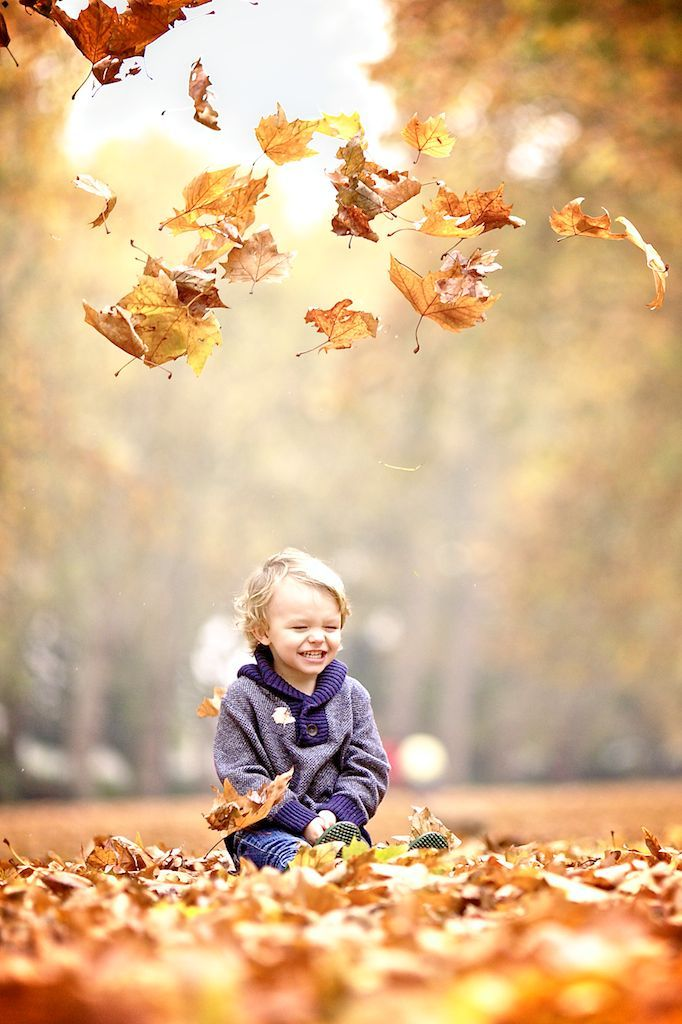 Falling leaves - pinned by 23snaps; the family photo app.