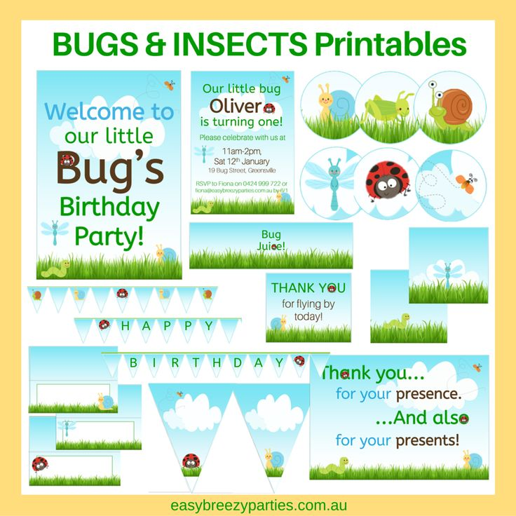 Super cute Bugs & Insects Party Printable Set by Easy Breezy Parties on Etsy. Includes welcome and thank you signs, 2 inch circles, treat bag labels, mini cake bunting, full sized bunting, chocolate wrappers, food tents and drink bottle wrappers. Available for instant download at https://www.etsy.com/listing/261541885/bugs-insects-party-printable-set #bugparty #easybreezyparties