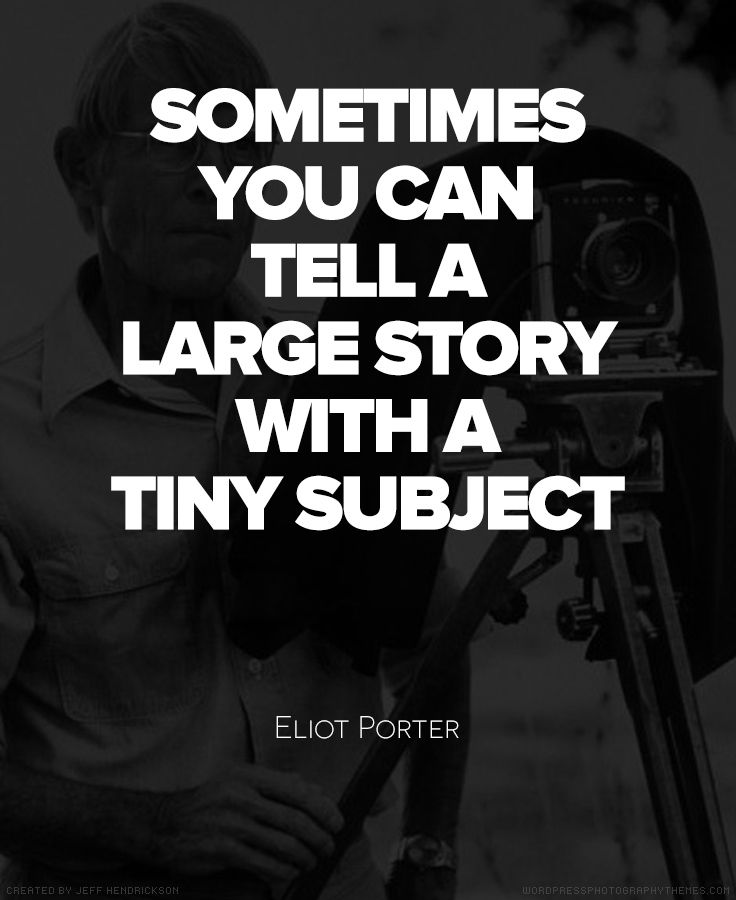 Best Photography Quotes Images On   Inspire Quotes