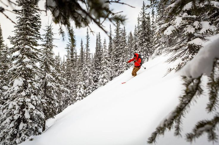 Even when it's cold there's something undeniably rewarding about being out in the back country.  No line ups  no expensive food  oh and did I mention that you get a lot more first tracks? #skitouring #skiing #backcountryskiing #backcountry #ventureout #earnyourturns #liveskirepeat #powdays #MountainCultureElevated #northmanlife #BritishColumbia #skiBC #untrackedexperience #yohonp #snowseekers #spreadstoke #ExploreBC #myBCbackcountry
