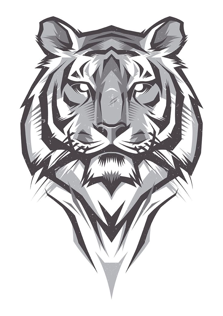 Shulyak Brothers - tiger illustrations                                                                                                                                                                                 More