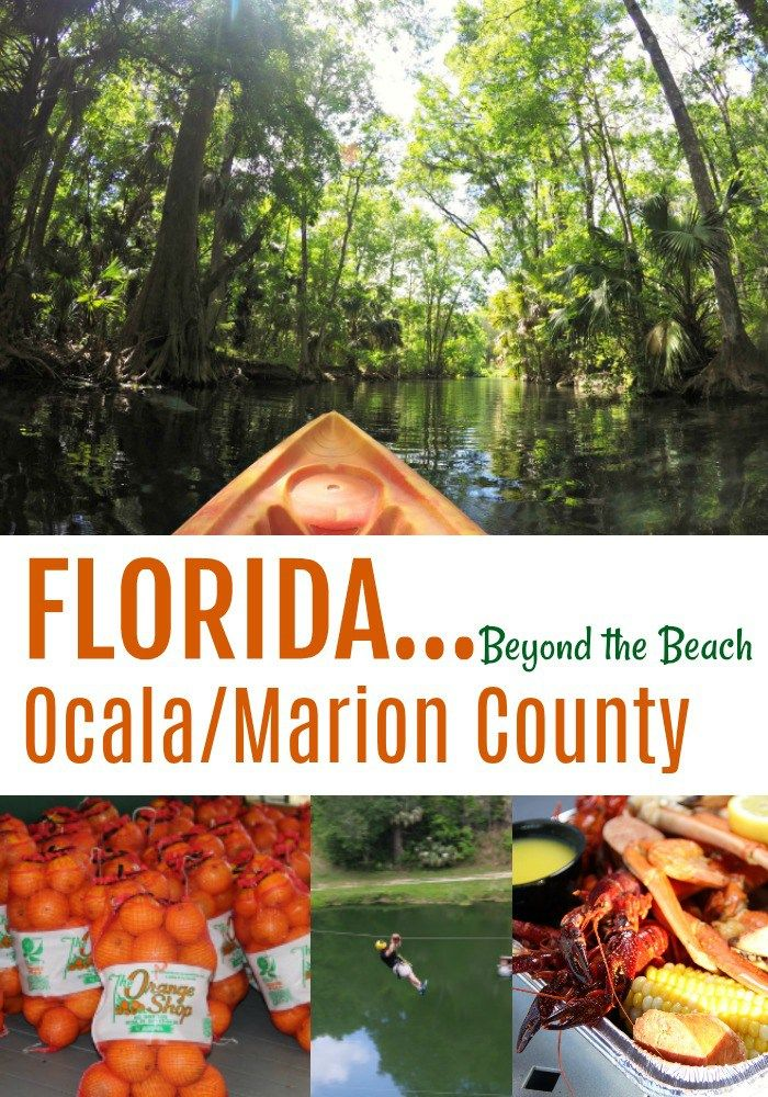 Ocala/Marion County - from the Ocala National Forest to ziplining over lakes this slice of Florida has something for everyone! #ad #OcalaMarion