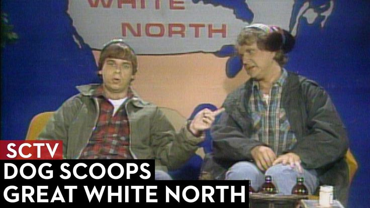 The McKenzie Brothers discuss what people in New York do when a dog has... done their business. SCTV, the award winning sketch comedy show produced by The Se...