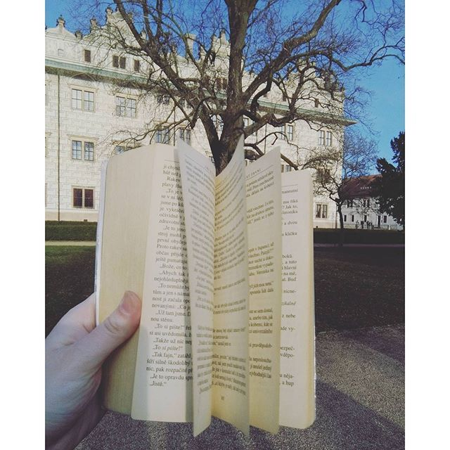 Listování #book #literature #fiction #fictionworld #fantasy #nature #tree #castle #bluesky #sunny #litomysl #walk #lovereading