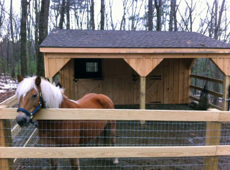 Best 25 mini horse barn ideas on pinterest small barns for 1 stall horse barn