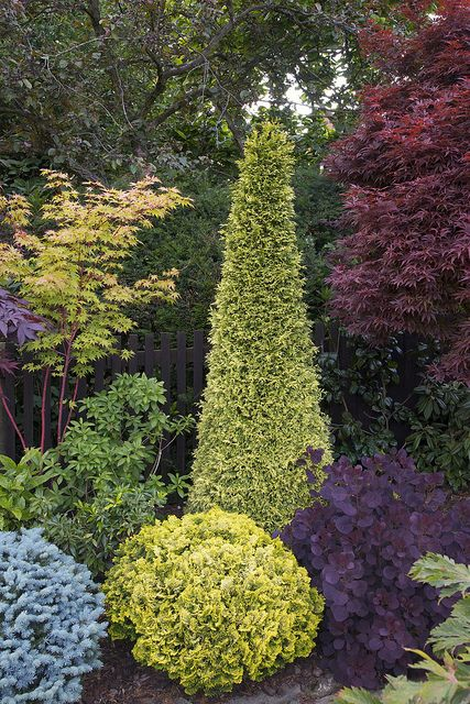 Jane's dream garden. Add in enough silver blue and white to tie to house color.  Conifers, acers, smoke tree
