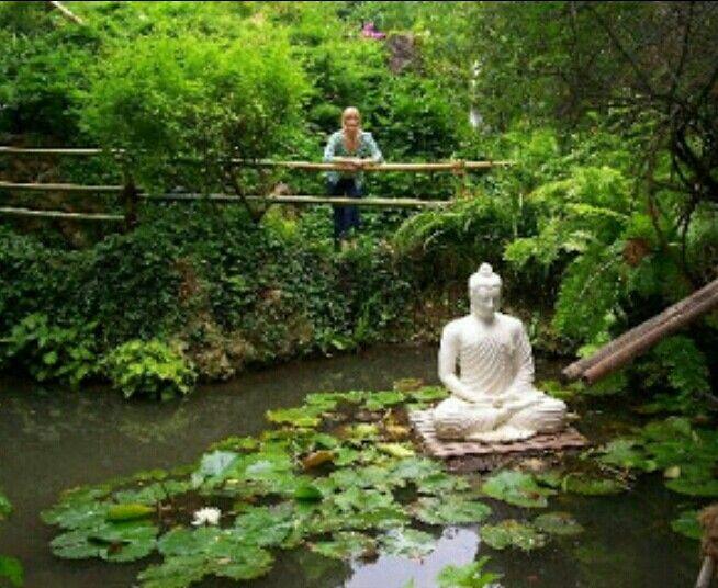 27 best meditation space images on pinterest meditation for Japanese garden meditation