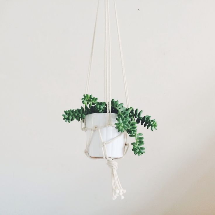 Hang some greenery from the lofty ceiling :-)
