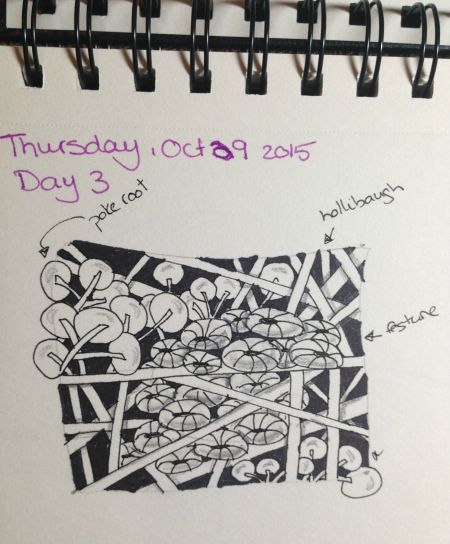 One Zentangle-A-Day, day 3 (poke root, hollibaugh & festune)