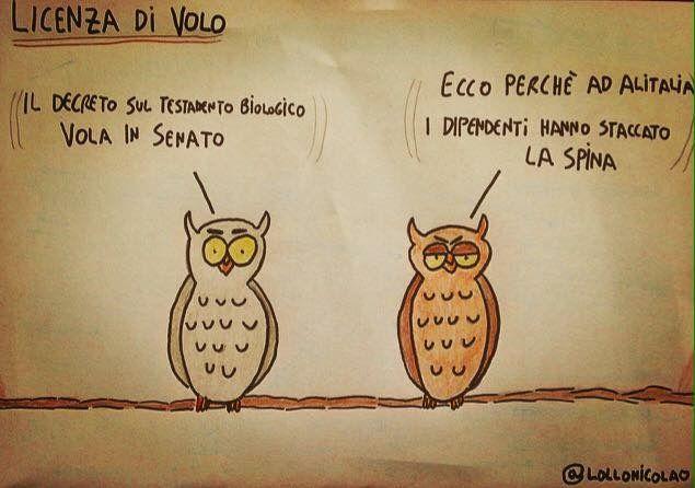 Alitalia e testamento biologico. Politica in Italia.
