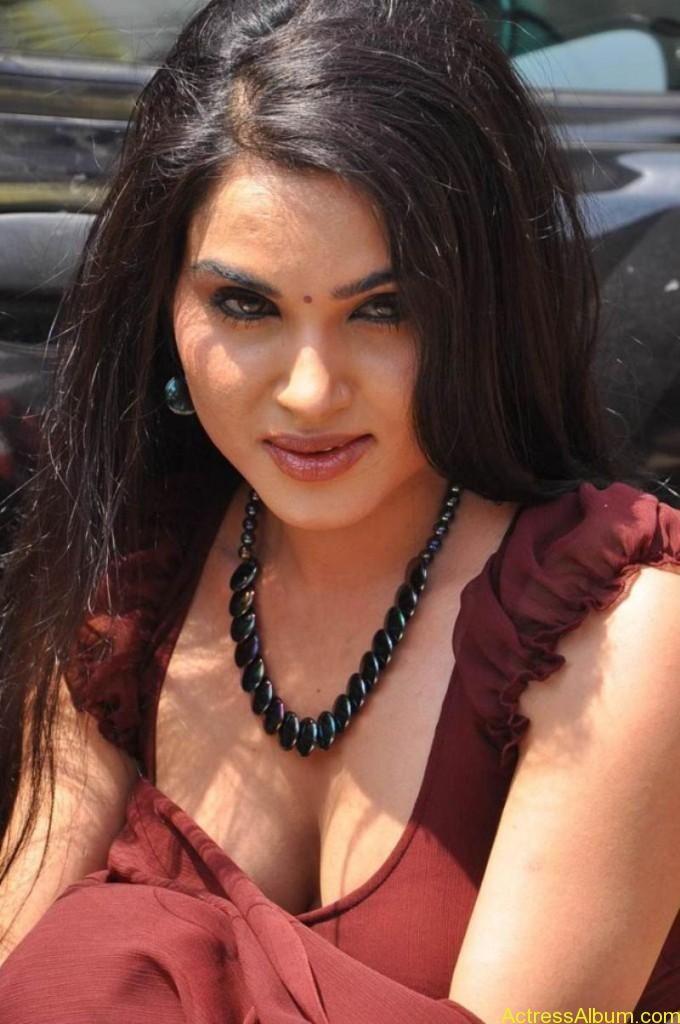 Kavya Singh Hot Saree Stills