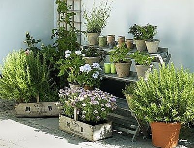 Brabourne Farm - Austrialian decorating and style blog: Plants Can, Pots Gardens, Gardens Ideas, Plants Stands, Terracotta Can, Herbs Gardens, Wine Boxes, Gardens Design, French Grey