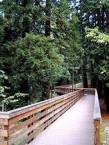 UC Santa Cruz.  I went to college here.  This bridge remains in my dreams.