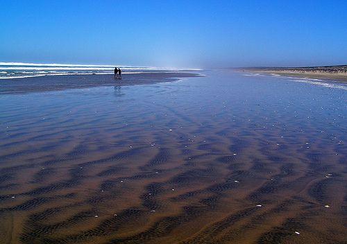 Ninety Mile Beach, Northland, New Zealand