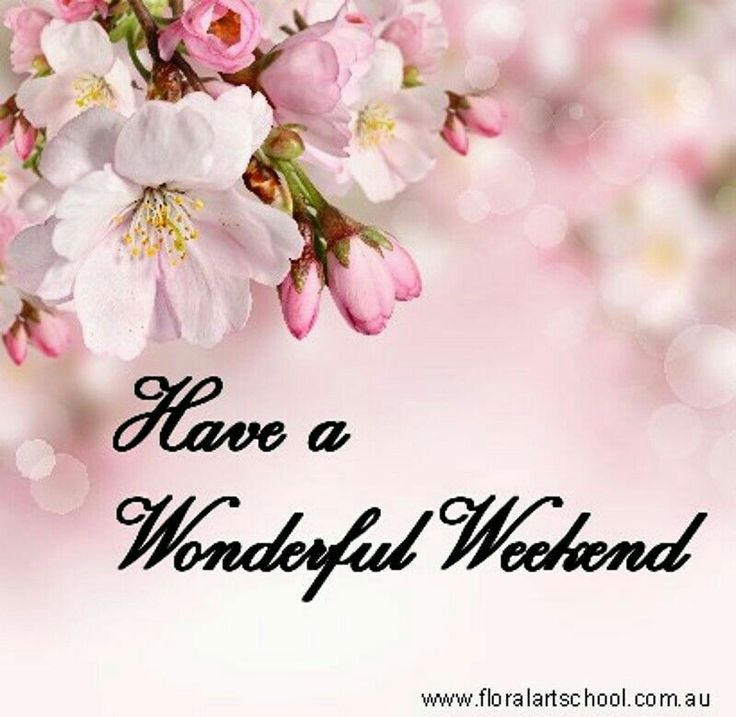 25 best happy weekend quotes ideas on pinterest happy weekend happy weekend messages and - Week end a nice ...