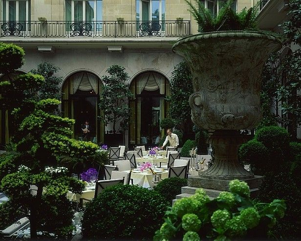 Where to stay?! Daily inspiration: ParisLove this courtyard garden at the George V Hotel, Paris.