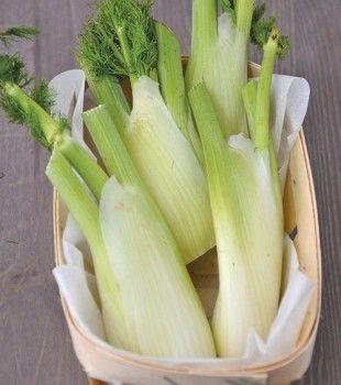 Ricette: Succhi vivi di frutta e verdura con l'estrattore di succo - SuccoVivo