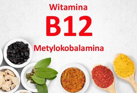 http://sklep.sveaholistic.pl/blog/znaczenie-i-wlasciwosci-witaminy-b12-metylokobalaminy-dla-organizmu.html