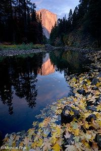 El Capitan and Merced River, Autumn, Yosemite National Park, CA: Yosemite National, Wide Angles, Merc Rivers, Photography Blogs, Beautiful Places, National Parks, Landscape Photography, Create Depth, Captain